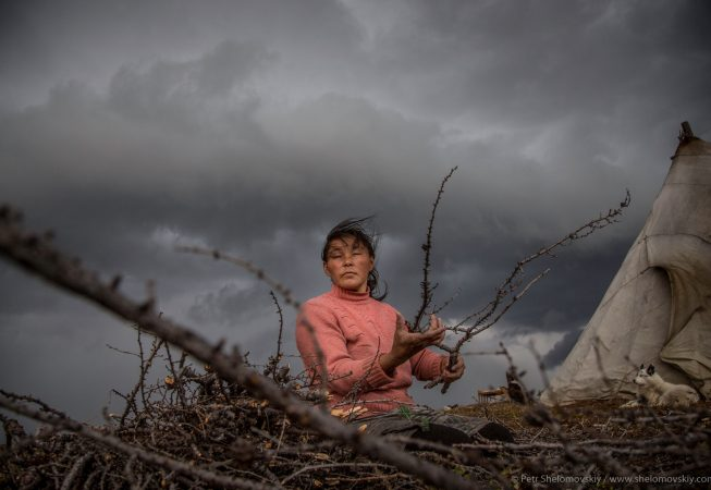 Elvira Yadne is preparing firewood in the family herding camp on the left bank of Yenisey river in West Siberia