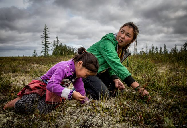 17 yo Nadezhda Yadne (R) and her nephew Kristina pick berries near the family herding camp on the left bank of Yenisey river in West Siberia